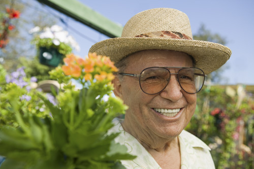 Healthy Diet Associated with Better Quality of Life in Older Adults